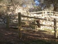 Vue des barrières posées. Avec plans droits et plans inclinés